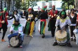 African Day Parade: Celebration & Protest