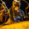 The Martial Artists and Acrobats of Tianjin